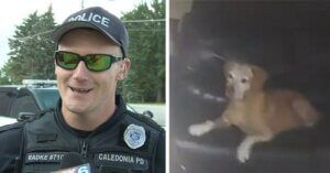 """Officer Rescues """"Unbothered"""" Dog From Sofa Inside Burning House"""