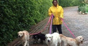 Oprah's Three Beloved Dogs All Came From A Chicago Shelter