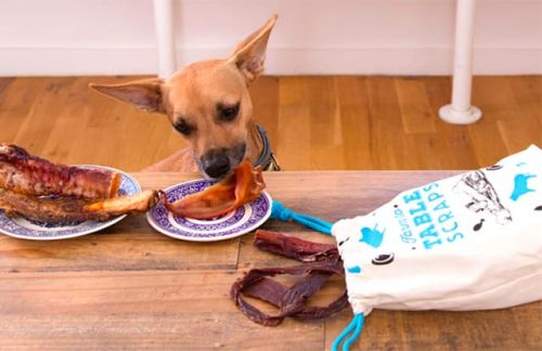How Do I Choose Food For My New Dog?