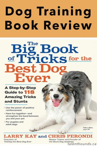 "Larry Kay ""Big Book of Tricks for the Best Dog Ever"" Review"