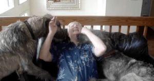 Grandmother Covered in Kisses by Gigantic Puppies