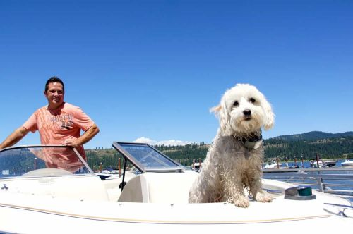 Rent A Pet Friendly Boat