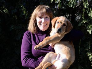 Puppy Raiser Profile: Susan Chamberlin by Sean Keiser