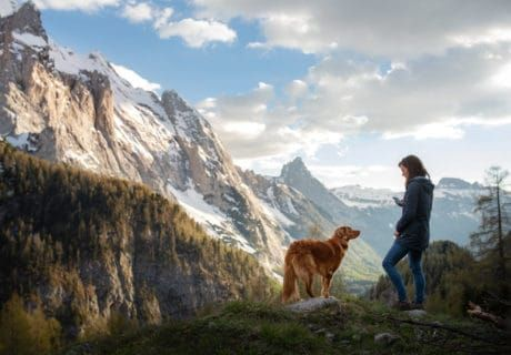 Hiking Safety: Encountering Predators on the Trail