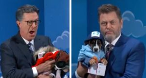 """Nick Offerman Stops By """"The Late Show"""" To Help Costumed Rescue Dogs Get Adopted"""