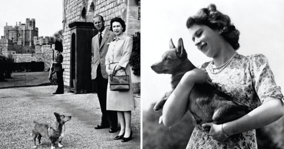 Heartwarming Vintage Photos Of Queen Elizabeth II And Her Royal Corgis