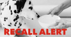 RECALL: Performance Dog Raw Pet Food Tests Positive For Salmonella And Listeria