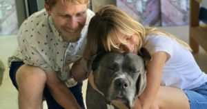 Kaley Cuoco Adopts Giant Senior Dog After Losing Her Best Friend