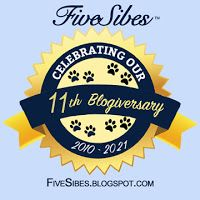 Celebrating 11 Years of FiveSibes Blogging!