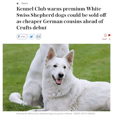 White supremacy - alive and well at the Kennel Club