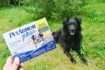 Get Ready for Spring with PetParentApproved PetArmor