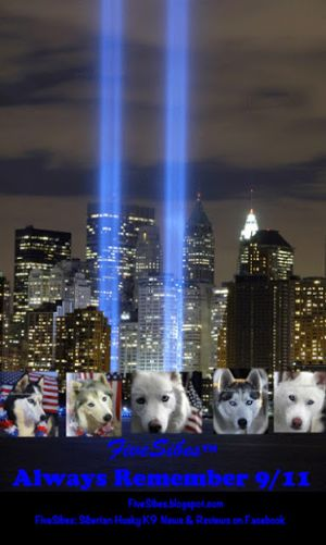 FlashbackFriday: We Will NeverForget ~ Tribute to 9/11 Hero Dogs