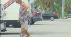 Woman Kicked, Choked And Hanged Her Dog, Laughed At The Man Trying To Stop Her