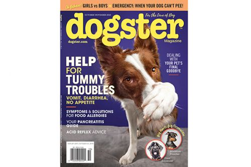Dug Up at Dogster: October 2019 Dog Events and Premieres