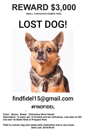 FindFidel