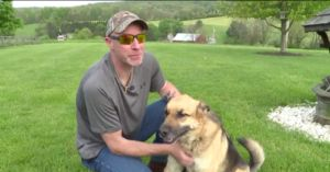 """Dog """"Bounty Hunter"""" Works Tirelessly to Reunite Dogs to Their Humans"""