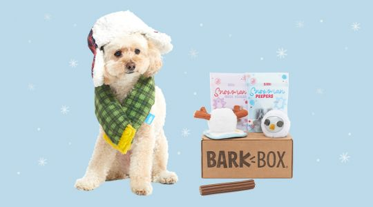 School's Cancelled! Reveal January's BarkBox Theme For A Magical Surprise