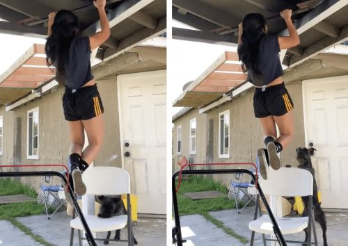 Safety-First Dog Puts Chair Under His Exercising Mom