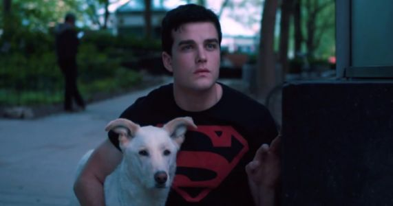 Death Row Puppy Is Chosen To Play Superboy's Sidekick On HBO Max
