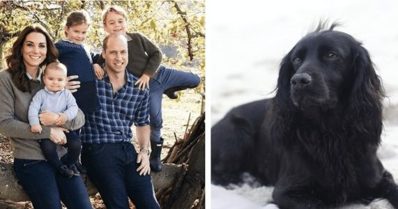 Prince William And Kate Middleton Mourn The Loss Of Family Dog