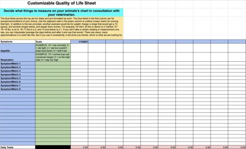 Create a Custom Quality of Life Scale for Your Dog
