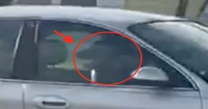Dog Becomes Accidental Driver Of Car Left Running