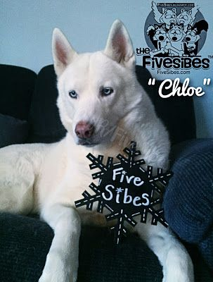 Remembering Chloe