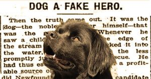 """Clever """"Hero"""" Dog Faked Emergencies To Earn Treats"""