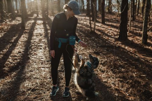 7 Tips for Winter Running with your Dog