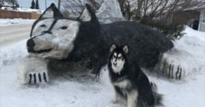 Dog Mom Carves Massive Husky Out Of Snow