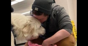 Formerly Missing Dog Rescued From Hoarding Situation Reunites With Person
