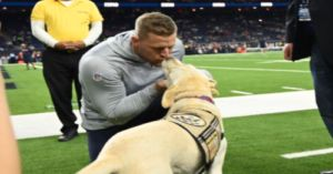 J.J. Watt Smooches Presidential Service Dog Sully In Truly Iconic Celeb Photo