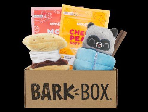 """Fetch A Stick & Gather 'Round The Fire, June's BarkBox Is Off To """"Squeakaway Camp""""!"""