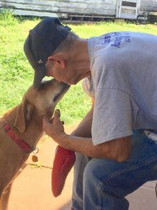 Terminally Ill Man's Dying Wish Is for His Rescue Dogs to Find Forever Home