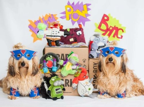 Is BarkBox Worth It?