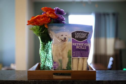 Retriever Rolls And The PetAction Flea & Tick Collar For Dogs At BJ's Wholesale Club!