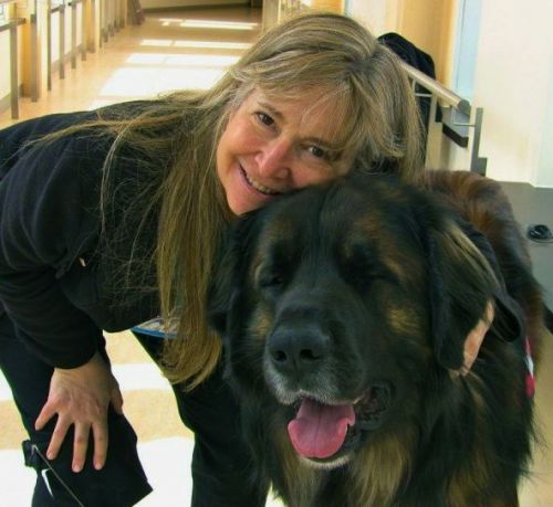 Is the Leonberger Dog Breed right for you?
