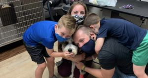 7-Year-Old's Lost Therapy Dog Found Safe Thanks To Kind Community