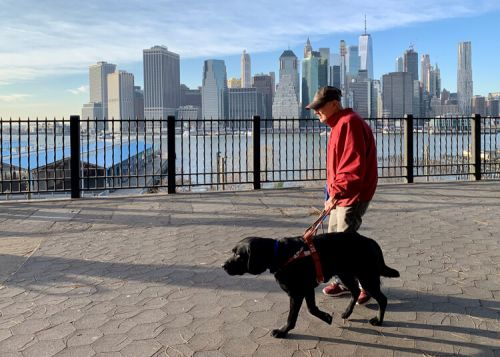 Join Team Guiding Eyes at the 2020 TCS NYC Marathon