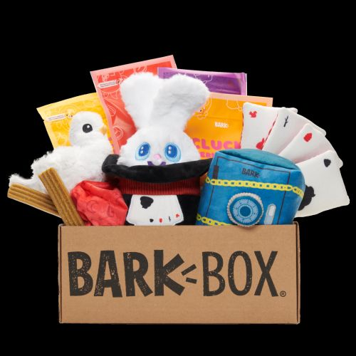 Don't Blink! March's BarkBox Theme Is: THE GREAT BARKINI'S MAGNIFICENT MAGIC BOX
