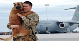 Suicidal Veteran With PTSD Adopts Rescue Dog. Now He's Helping Other Vets Do The Same