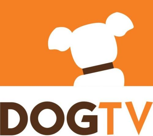 DOGTV Launches Programs on YouTube