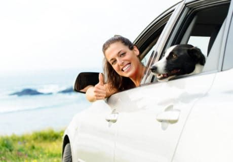 Using Rideshares With Pets