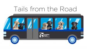 Tails from the Road - Guide Dogs Go West