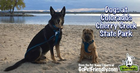 Visiting Colorado's Cherry Creek State Park with Dogs