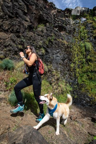 Dog-Friendly Hikes: Idaho