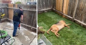 Rescue Dog Returned 4 Times Gets The Yard He's Always Wanted