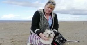 30 Strangers Help Dog Mom Say Goodbye To Her Senior Shih Tzu With One Last Walk
