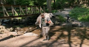 Ranger Saves Overheated Dog, Carrying Him Miles Down A Rocky Trail