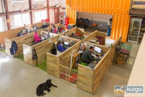 Get A Glimpse Inside The Dog-Friendliest Workplace You've Ever Seen!